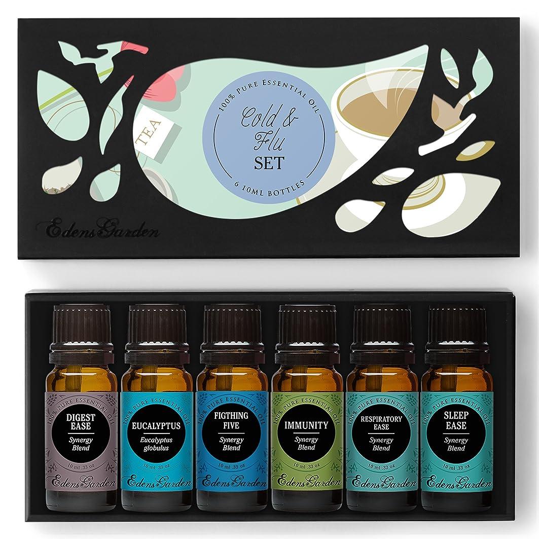 レオナルドダ割れ目広がりCOLD & FLU Essential Oil Set- 100% Pure Therapeutic Grade Aromatherapy Oils- 6/ 10 ml of Digest Ease, Eucalyptus, Fighting Five (previously known as Four Thieves), Immunity, Respiratory Ease, Sleep Ease by Edens Garden by Edens Garden