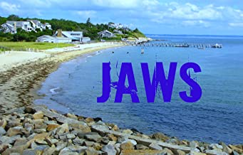 Jaws: A Film Score Essay