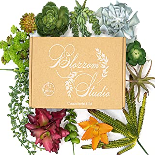 Blozzom Studio Artificial Succulent Plants - 12 PCS Faux Succulents Unpotted - Realistic Fake Succulent Plant for Home, Wall, Desk, Indoor, Outdoor Decor - Small and Large Assorted Size with Stems.