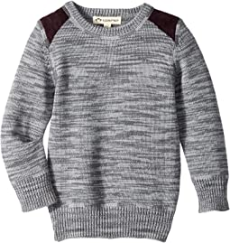 Appaman Kids - Skillman Sweater (Toddler/Little Kids/Big Kids)
