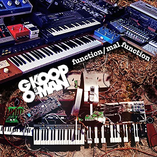 Function Malfunction (Stems) by G Koop & O-Man on Amazon