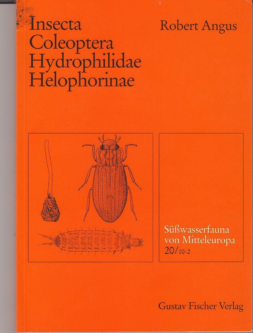 非常に怒っています意志に反する複製するSa1/4awasserfauna Von Mitteleuropa, Bd. 20/10-2, Insecta: Coleoptera: Hydrophilidae: Helophorinae (Suesswasserfauna von Mitteleuropa)