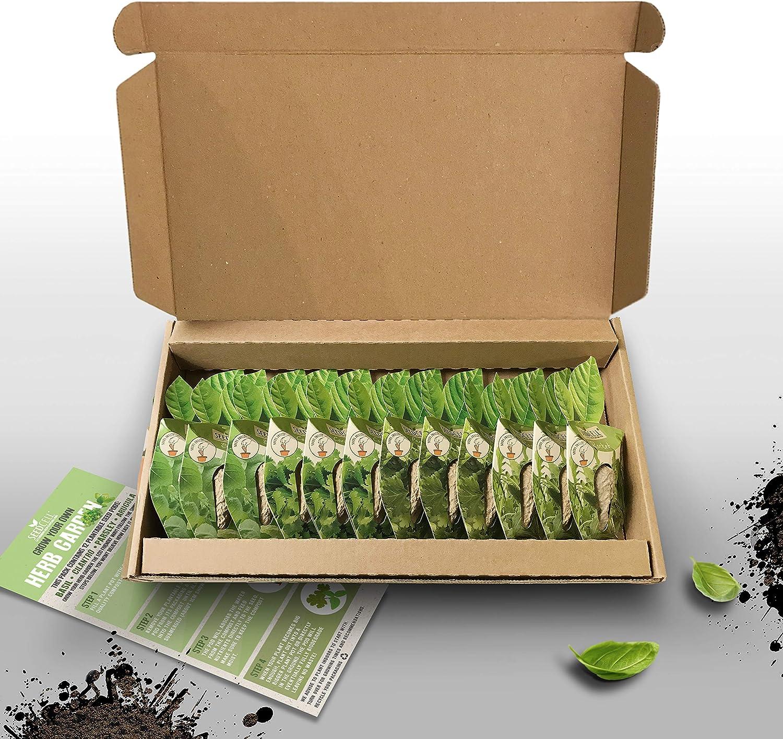 Vegtrug Seed Pod Max 55% OFF Kit - Varied Herb Large discharge sale