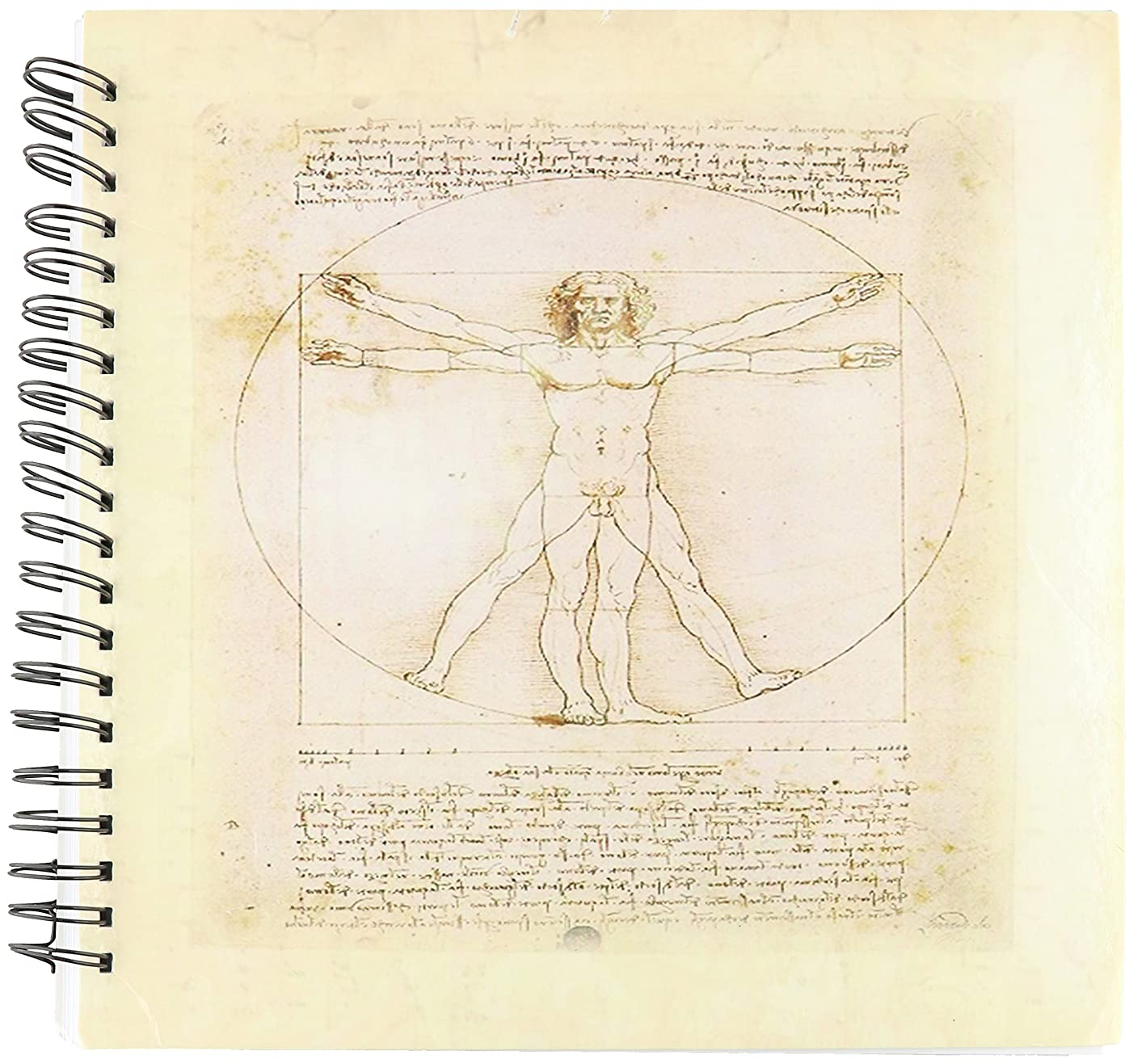 3dRose db_58513_2 Famous Davinci Drawing Memory Book, 12 by 12-Inch