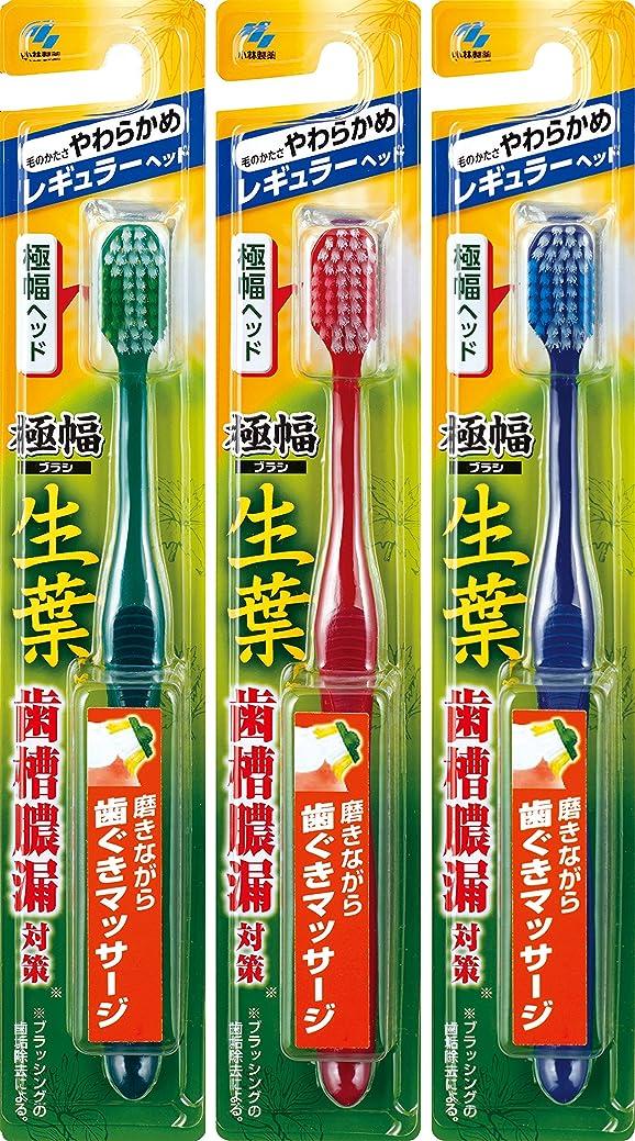 小道調和マインドフル【まとめ買い】生葉(しょうよう)極幅ブラシ 歯ブラシ レギュラーヘッド やわらかめ×3個