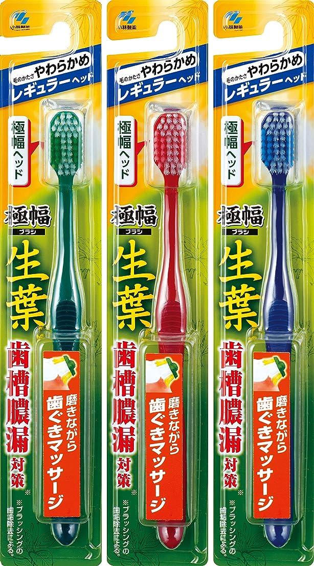刺す特性要求する【まとめ買い】生葉(しょうよう)極幅ブラシ 歯ブラシ レギュラーヘッド やわらかめ×3個