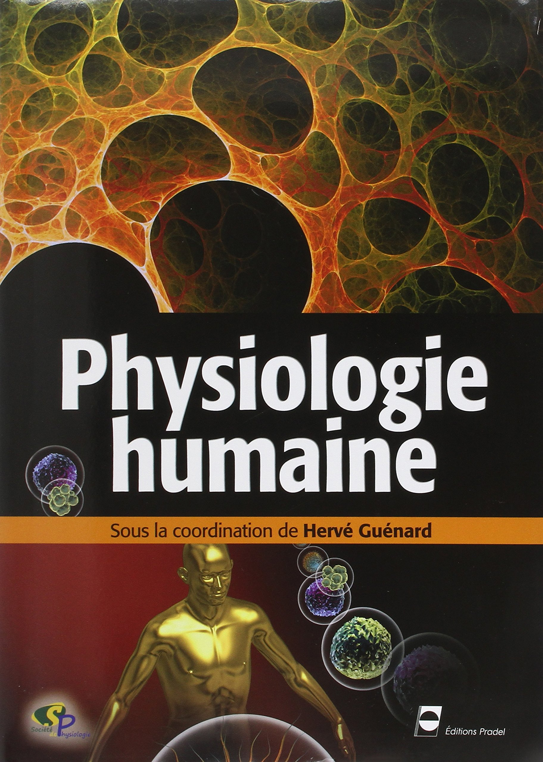 Download Physiologie Humaine 