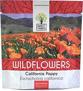 California Orange Poppy Wildflower Seeds - Bulk 1 Ounce Packet - Over 20,000 Native Seeds - California State Flower!