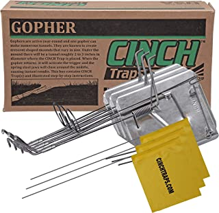 Cinch Traps-Medium Gopher Trap Kit: 3 Gopher Traps with Tunnel Marking Flags and Instructions- Made in America