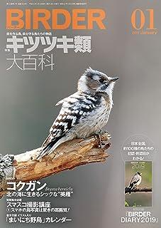 BIRDER (バーダー) 2019年 01月号 [雑誌]