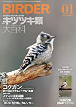 表紙: BIRDER (バーダー) 2019年 01月号 [雑誌]   BIRDER編集部