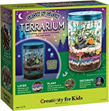 Creativity for Kids Grow 'N Glow Terrarium Kit for Kids - Science Activities for Kids (Packaging May Vary)