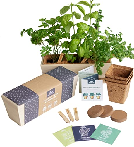 Herb Garden Starter Kit - Grow Live Herbs Indoors from Seed in Your Kitchen or Window - Perfect Gardening Gift - Indo...