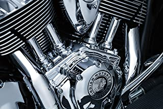 Kuryakyn 5641 Motorcycle Engine Accessory: Tappet Block Accent Cover for 2014-19 Indian Motorcycles, Chrome