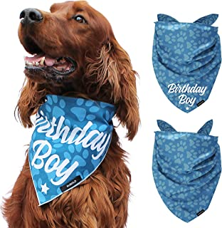 Best birthday presents for your dog Reviews