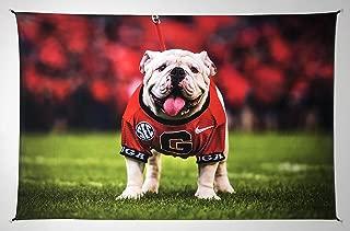 UGA Georgia Bulldogs: Photo Tapestry Poster Wall Art Print - UGA X Mascot