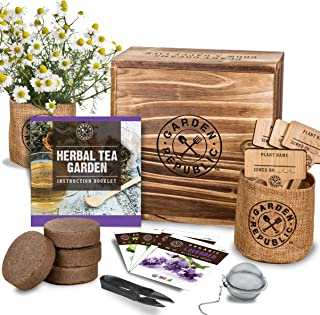 Indoor Herb Garden Seed Starter Kit - Organic Herbal Tea Growing Kits, Grow Medicinal Herbs Indoors, Lavender Chamomile Lemon Balm Mint Seeds, Soil, Plant Markers, Planting Pots, Infuser, Planter Box