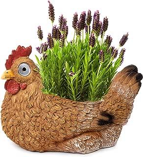 Best hen and chicken flower pot Reviews