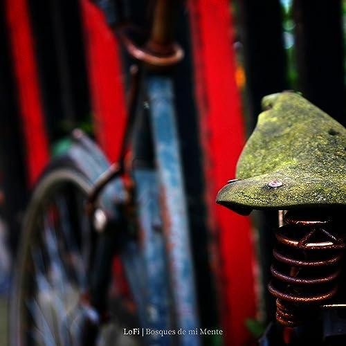 Los Titánicos Esfuerzos de una Bicicleta Oxidada por Avanzar de Bosques De Mi Mente en Amazon Music - Amazon.es