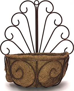 Deer Park WB107 Peacock Wall Basket with Cocoa Moss Liner