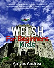 learning welsh for dummies
