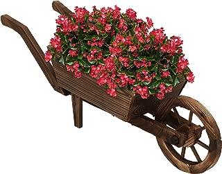 Best decorative wheelbarrows planters Reviews