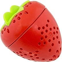 Sassy Fruit Infuser Basket, 2 Count