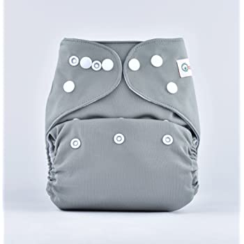 Bumberry Pocket Diaper and 1 Microfiber Insert(Grey)