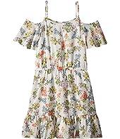 Floral Print Chiffon Dress (Big Kids)