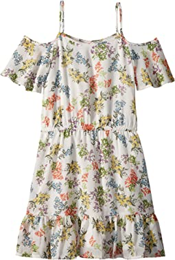 Ella Moss Girl Floral Print Chiffon Dress (Big Kids)