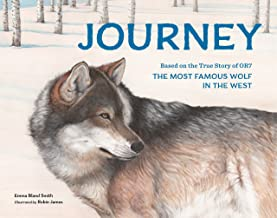 Best children's books about journeys Reviews