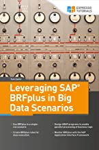 Best sap hana big data analytics Reviews