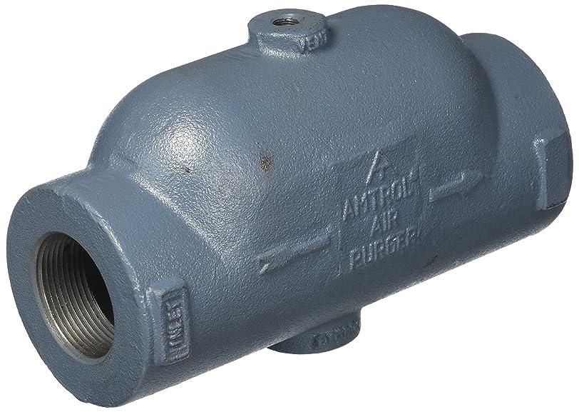 ペンダント釈義密度Amtrol Air Purger 1.5 Inch 4451 1