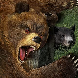 Life Of Bear FREE