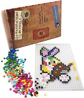 La Manufacture du Pixel - Kit Tapis et 900 Pixels à insérer (Translucide) - Pixel Art, Loisir Créatif, Mosaïque, Fun ! - C...