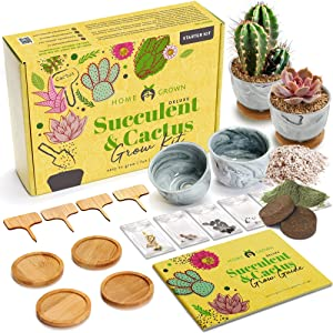 Deluxe Succulent & Cactus Seed Grow Kit - Complete Indoor Cactus & Succulent Kit w/Cactus Seeds, Potting Soil, Ceramic Succulent Pots, Water Drip Trays, Grow Guide