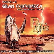 Hacia la Gran Chichimeca