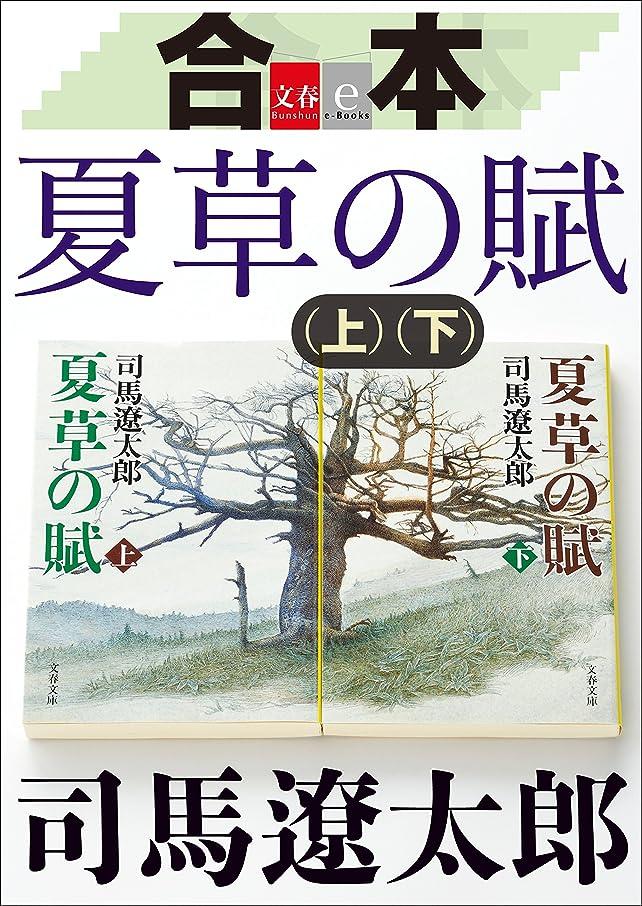 隣接する絡み合い切り下げ合本 夏草の賦【文春e-Books】