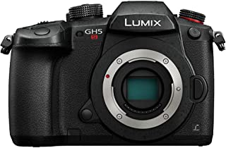 Panasonic Lumix DC-GH5S - Cámara EVIL de 10.28 MP ISO Base Nativo Dual Visor OLED 4K DCI TC IN/OUT RAW 14 bits Pantalla Táctil Color Negro