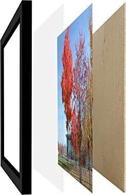 Medog 12x16 Black Picture Frame Without Mat to Display Pictures 11.81x15.75 Window Size 11.37x15.35 Safety high Transparent P