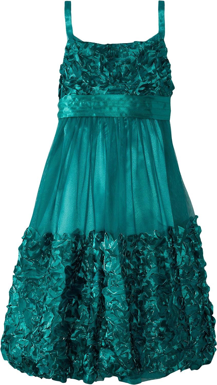 Bonnie Jean Big Girls' Mesh Bubble Dress with Bonaz Trim
