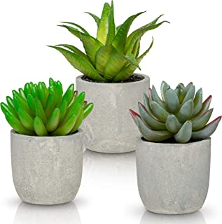 Ashbrook Outdoors Artificial Succulent Plants with Pots (Set of 3)   3 Faux Plants in Potted Light Gray Succulent Planters   Modern Home Décor Accents for The Office, Desk, Living Room, and More