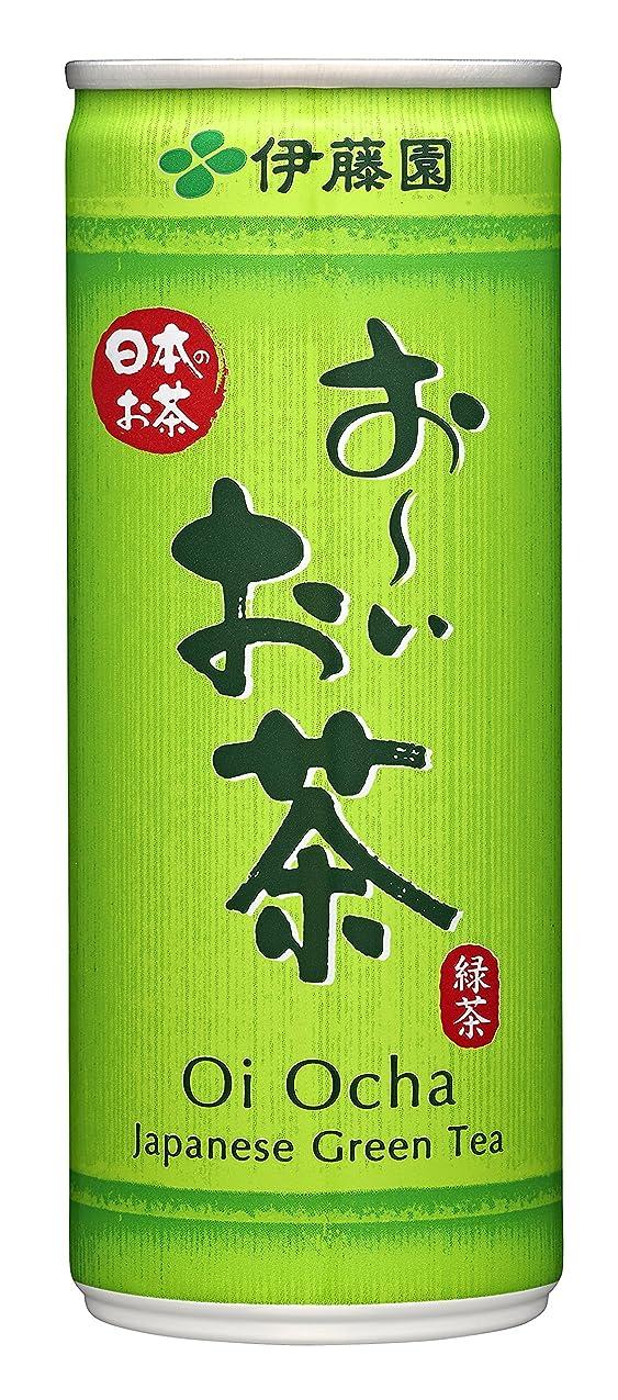 自動驚トラフ伊藤園 おーいお茶 緑茶 (缶) 245g×30本