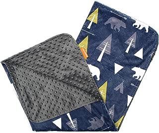 Dear Baby Gear 豪华婴儿毯,定制Minky 印花双层,冒险时熊 Bear Adventure on Blue/Grey Minky Dot 38 x 29 Inch