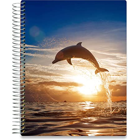 Hardcover with 8.5x11 Colorful Interior Vertical Weekly Layout Monthly Calendar Tabs and Stickers Tools4Wisdom Daily Planner 2020-2021 2020 2021 Academic Year, Q2S
