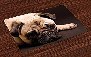 Ambesonne Pug Place Mats Set of 4, Photograph of a Pug with Its Little Paws Pure Bred Dog Image Animal Fun, Washable Fabric Placemats for Dining Room Kitchen Table Decor, Brown Pale Brown