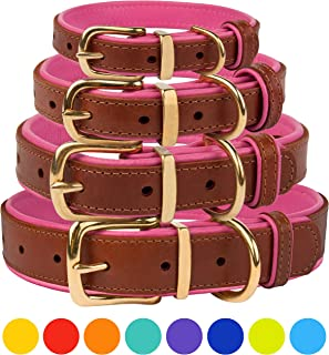 CollarDirect Leather Collar Buckle Padded