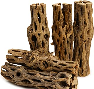 "NApremium Natural Cholla Wood | 5 Pieces of 5-6"" Long Natural Cholla Wood for Aquarium Decoration, Hermit Crabs, Shrimp"