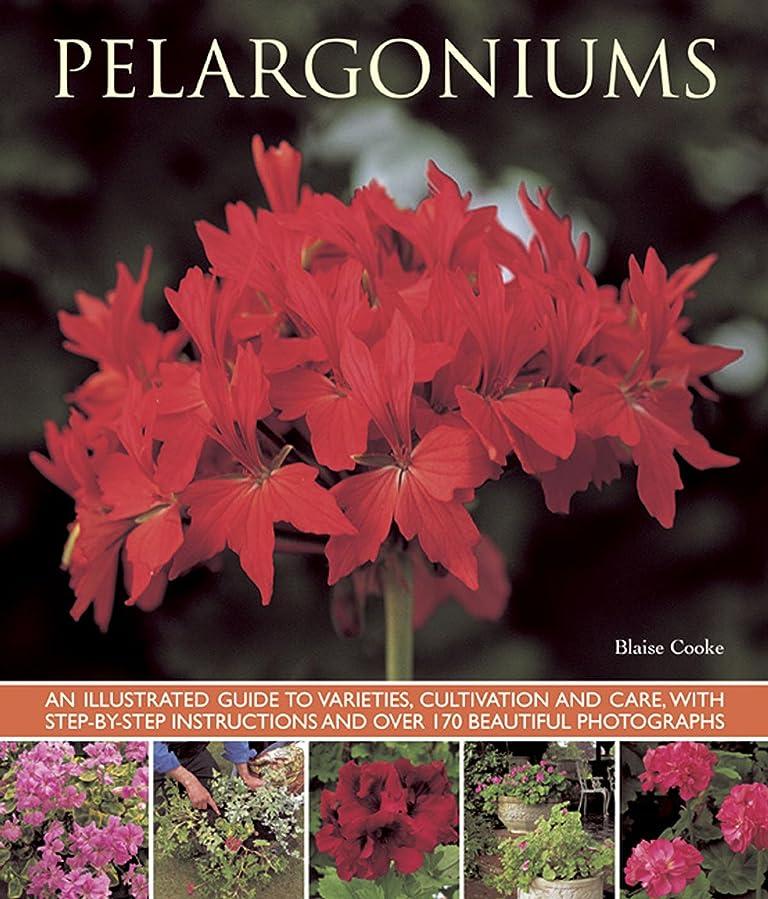 ダッシュローマ人乱暴なPelargoniums: An Illustrated Guide to Varieties, Cultivation and Care, With Step-by-Step Instructions and over 170 Beautiful Photographs