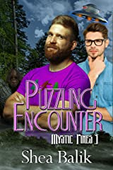 Puzzling Encounters (Mystic Pines Book 3) Kindle Edition
